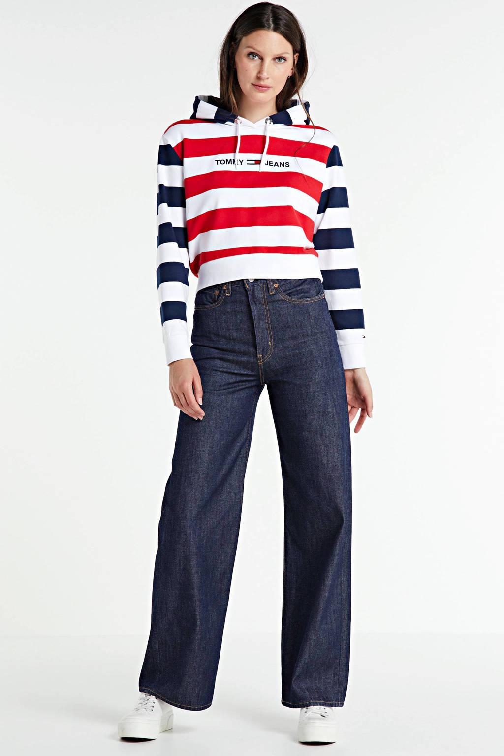 Tommy Jeans gestreepte hoodie met biologisch katoen twilight navy/multi, Twilight navy/multi