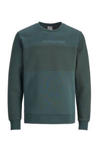 JACK & JONES PLUS SIZE sweater met textuur groen, Groen