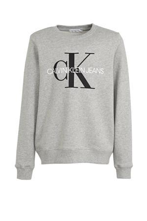 sweater van biologisch katoen grijs