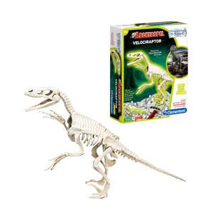 Archeospel Velociraptor