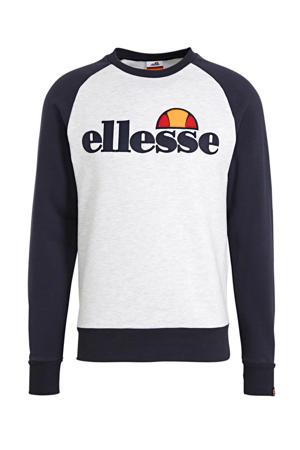 sweater lichtgrijs/donkerblauw