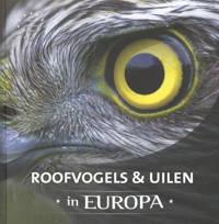 Roofvogels & uilen in Europa - Jaap Schelvis en Arno ten Hoeve