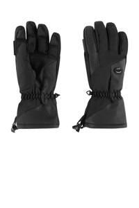 Sinner skihandschoenen Alps zwart, Zwart
