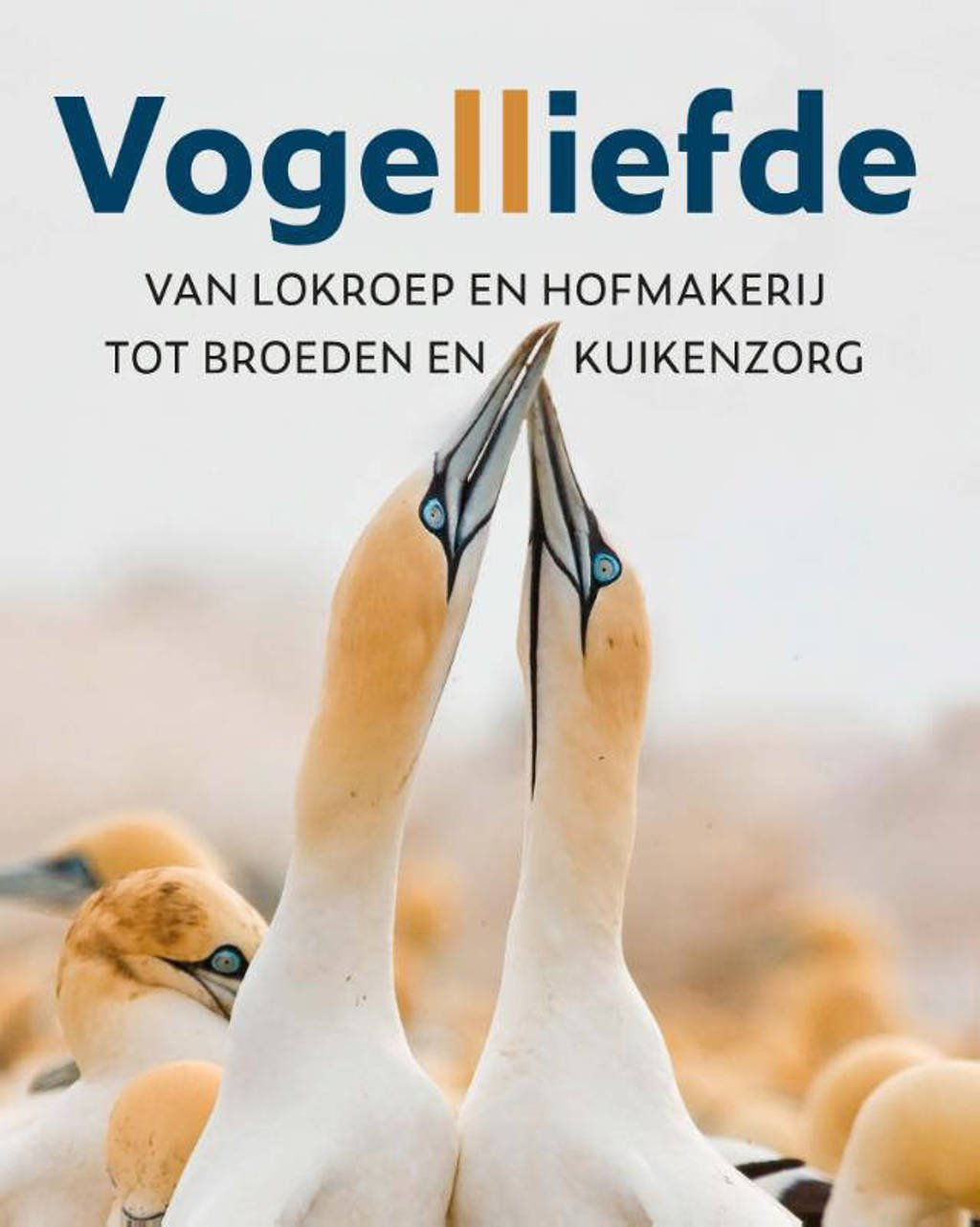Vogelliefde - Mike Webster en Wenfei Tong