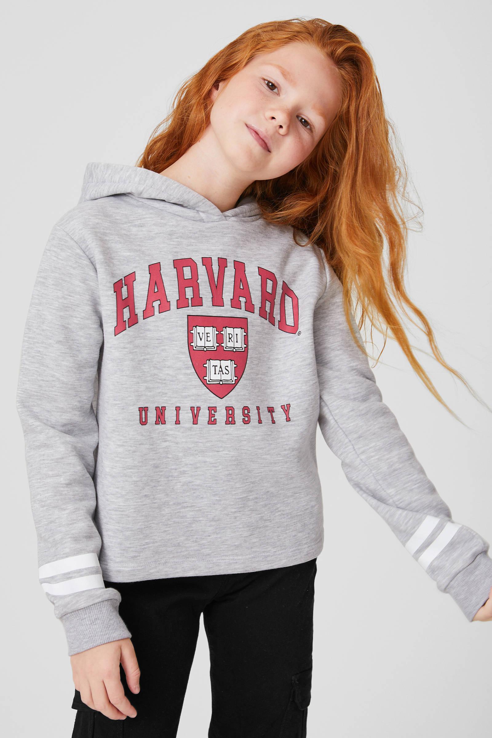 C&A hoodie met printopdruk lichtgrijs melangerood | wehkamp