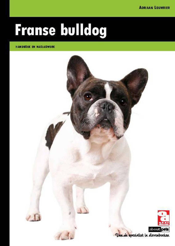 Franse bulldog - Adriaan Louwrier