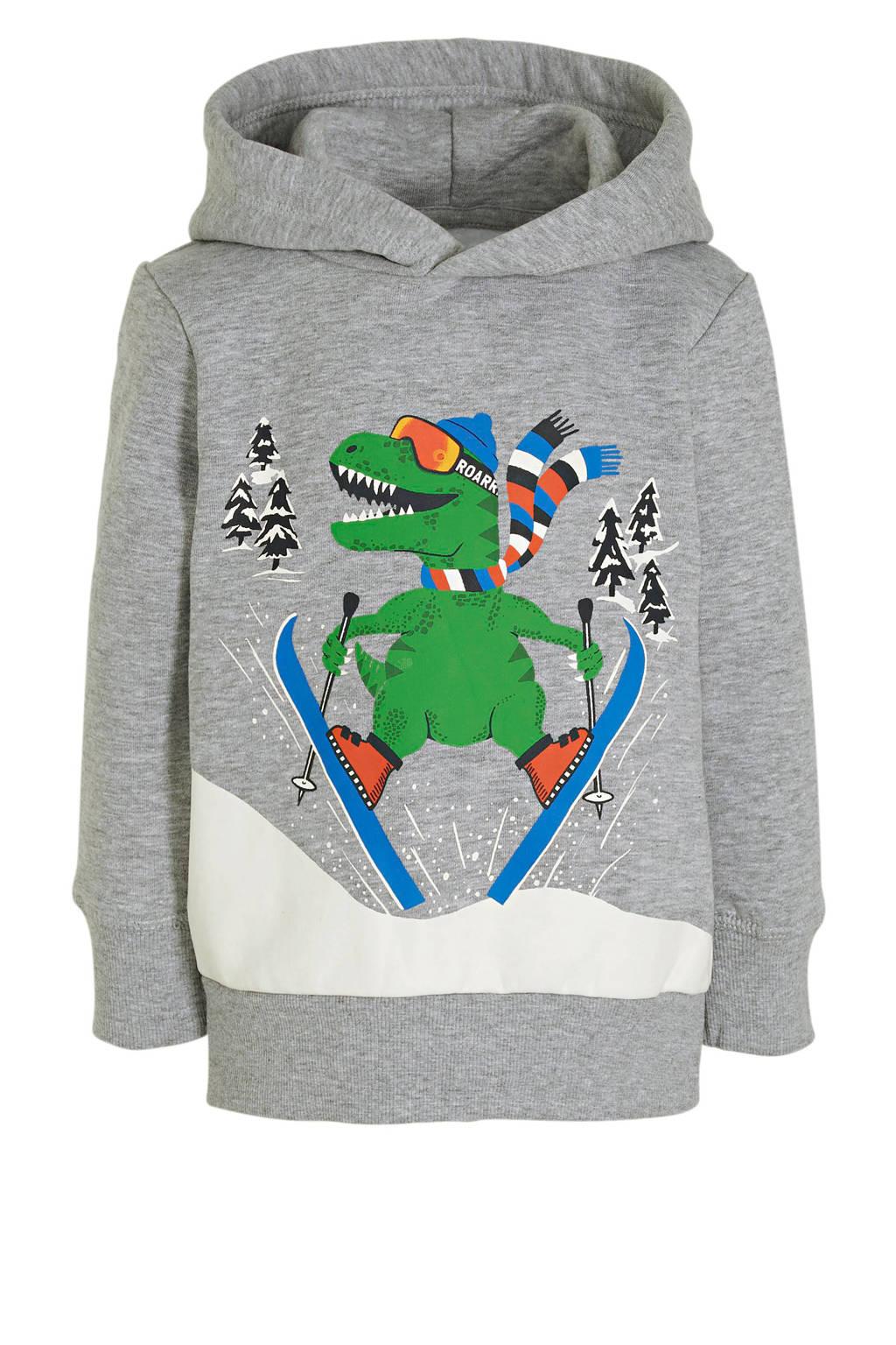C&A hoodie met printopdruk grijs/groen/blauw/wit, Grijs/groen/blauw/wit