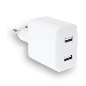 2X2.4 dual USB-A wandlader