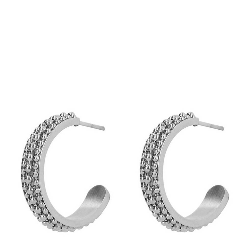 Sacha oorbellen zilverkleurig, Zilver