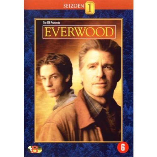 Everwood - Seizoen 1 (DVD) kopen