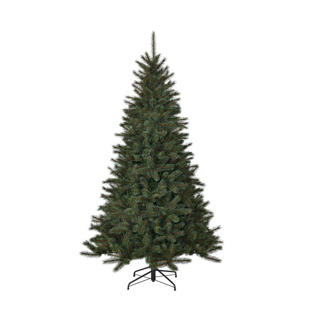 Black Box kerstboom Toronto (h155 x ø102 cm)