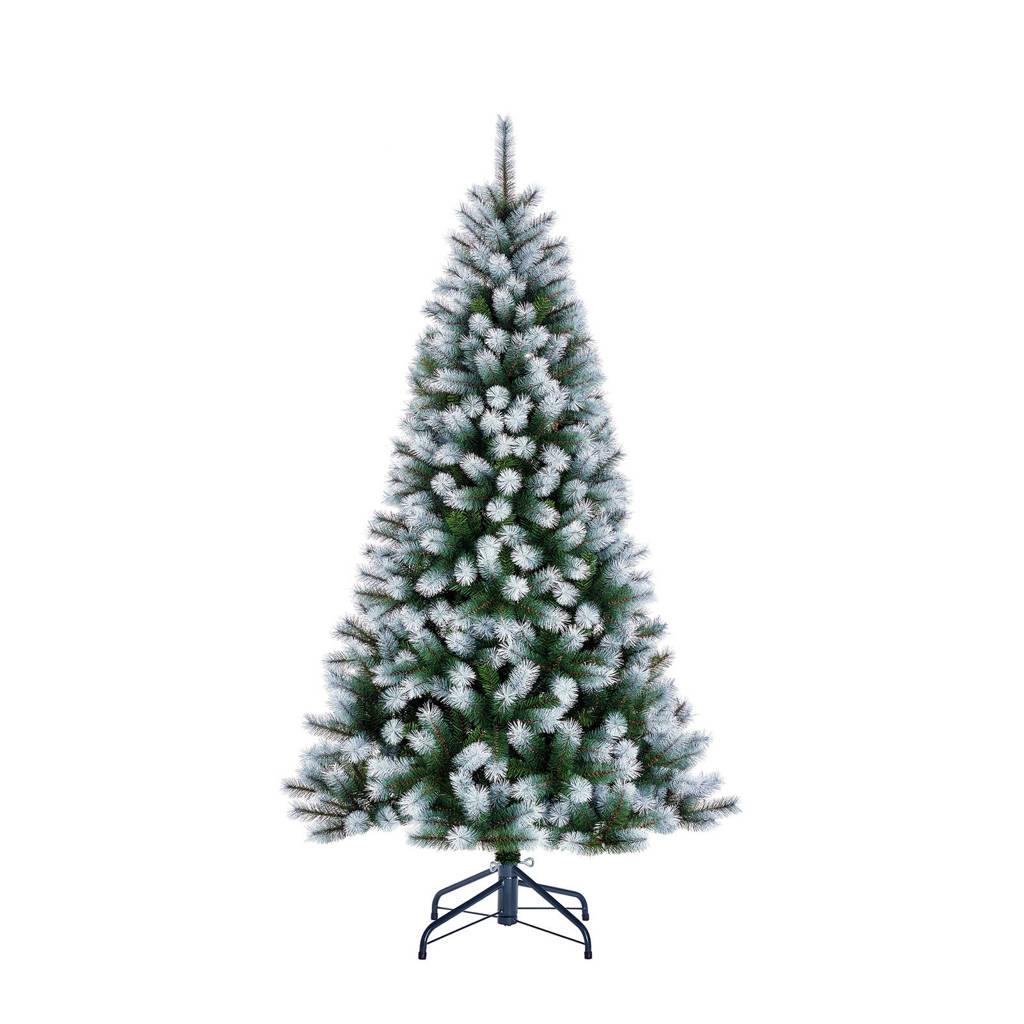 Black Box besneeuwde kerstboom Kingston (h215 x ø117 cm)