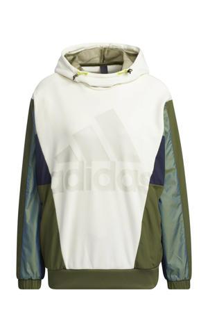 Future Icons sportsweater ecru/donkerblauw/groen