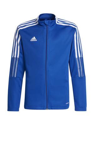 Tiro 21 voetbalvest kobaltblauw