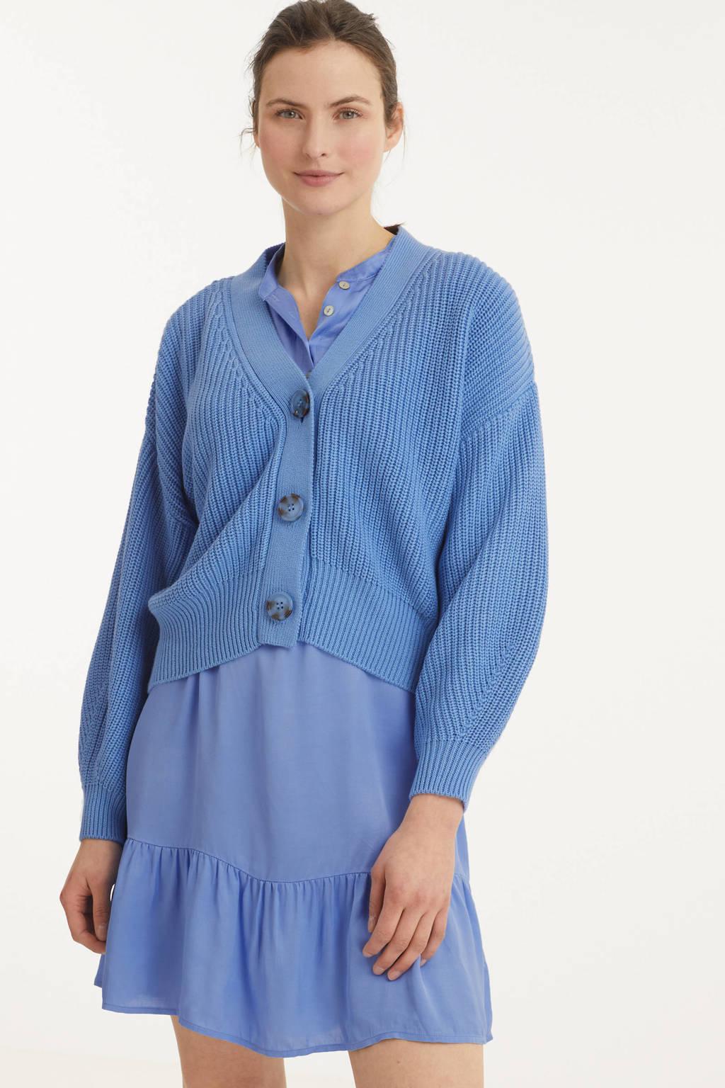 Esqualo gebreid vest blauw, Blauw