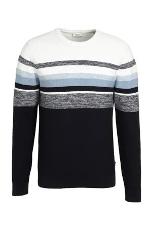 trui van biologisch katoen donkerblauw/wit
