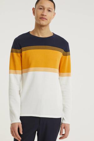 trui van biologisch katoen donkerblauw/geel/wit