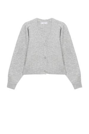 gemêleerd gebreid vest met wol grijs