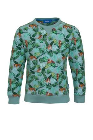 sweater Rajah met all over print groen/lichtblauw