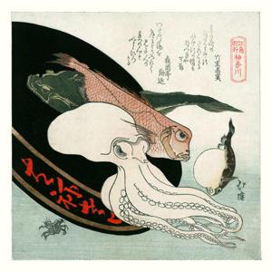 poster  (30x30 cm)