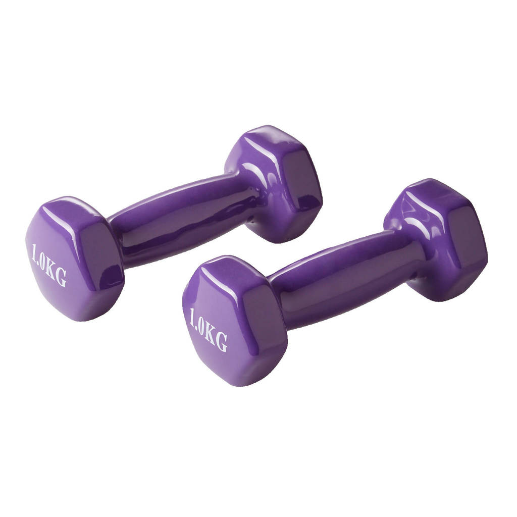 Active Panther dumbbell set 2x 1kg paars