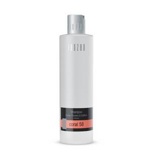 Shampoo - Coral 58