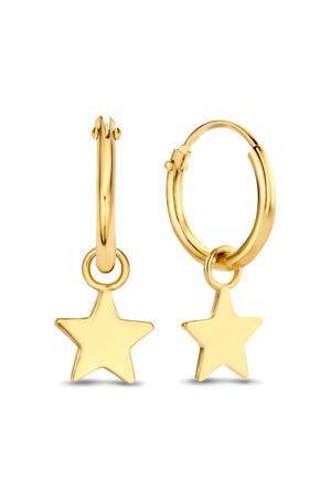 14 karaat gouden oorbellen - IB4-BFDG112