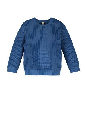 trui van biologisch katoen blauw