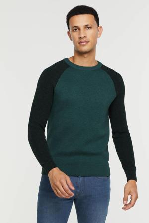 trui met biologisch katoen donkerblauw/groen