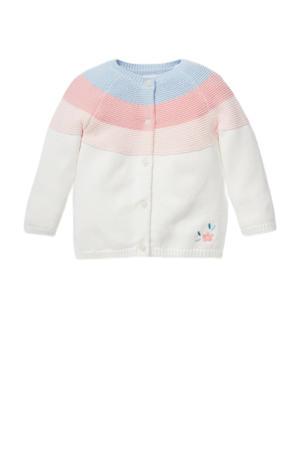 gebreid vest ecru/roze/blauw
