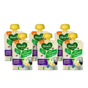100% Plantaardige Kokosmelk Bosbes smoothie