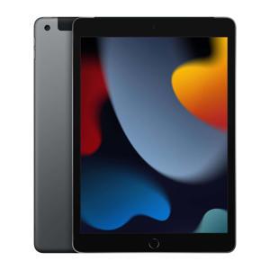 10.2-inch iPad (2021) Wi-Fi + Cellular 256GB Space Grey