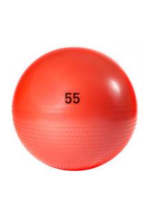 adidas performance gym bal 55 cm