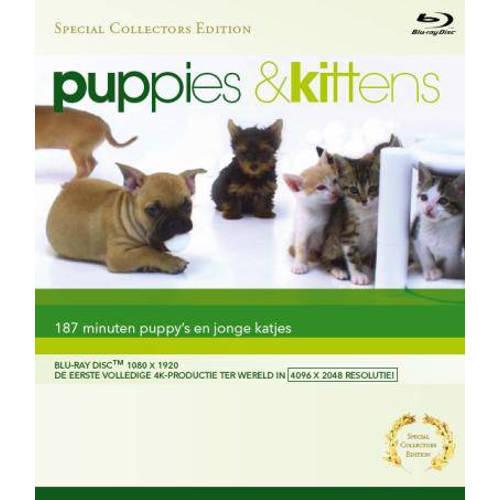 Puppies & kittens (Blu-ray) kopen
