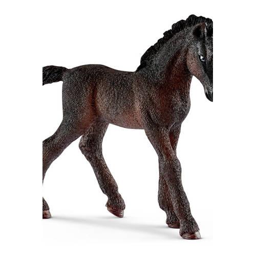 Horse Club Lipizzaner veulen kopen
