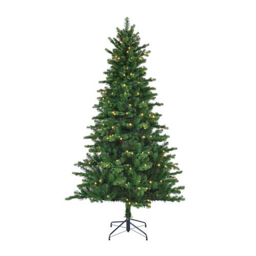 Black Box verlichte kerstboom Milton (h120 x ø81 cm) kopen