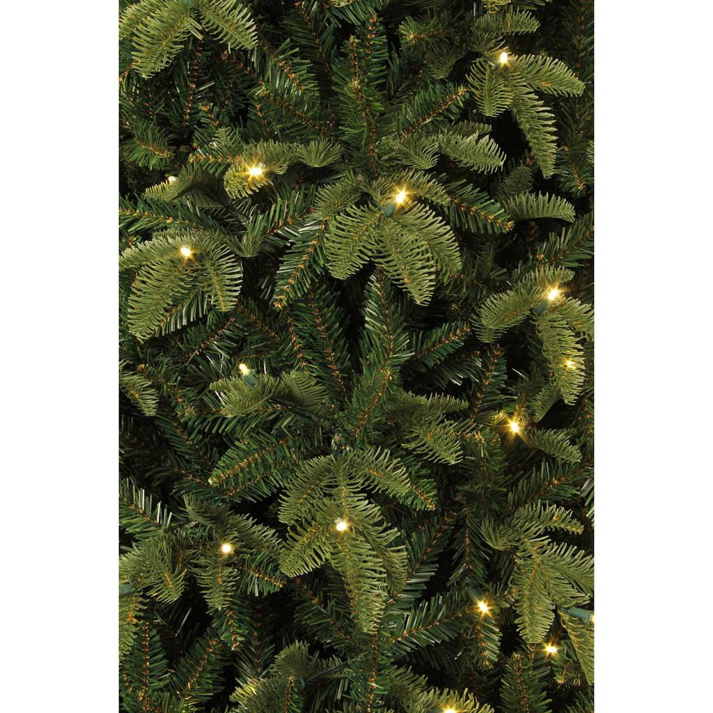 Black Box verlichte kerstboom Bolton (h185 x ø132 cm), Ja