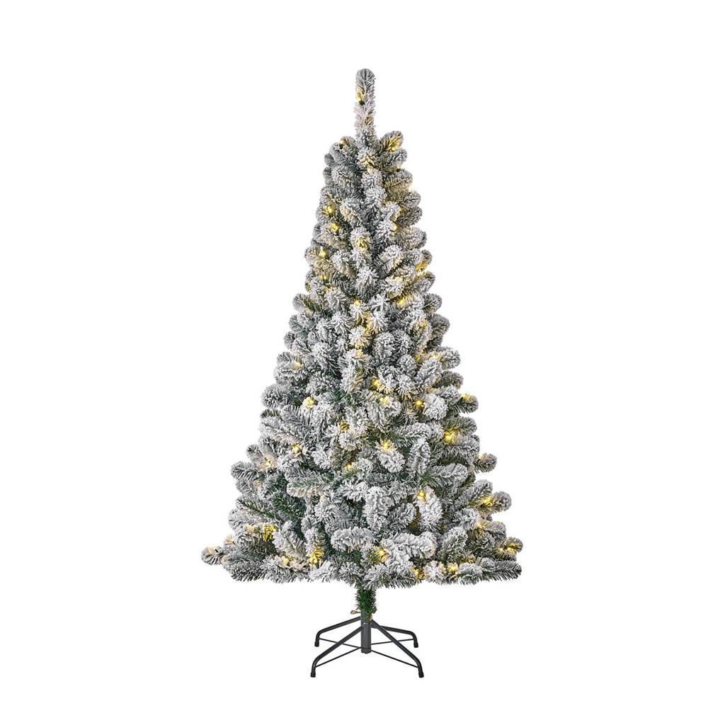Black Box verlichte kerstboom Millington (h155 x ø86 cm), Ja