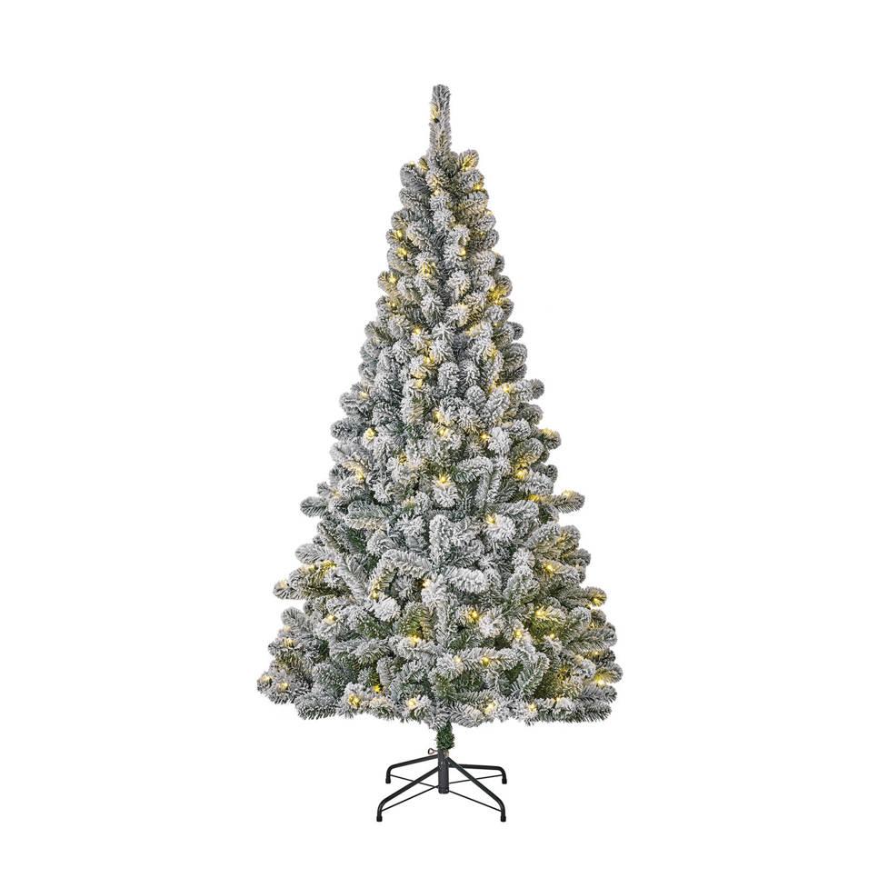 Black Box verlichte kerstboom Millington (h185 x ø109 cm) | wehkamp