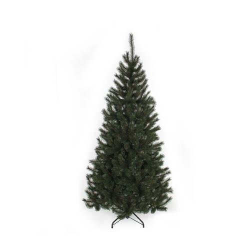 Black Box kerstboom Kingston (h155 x ø86 cm) kopen