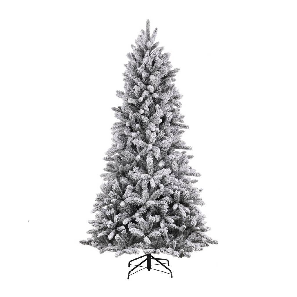 Black Box kerstboom Snowdon (h185 x ø117 cm)