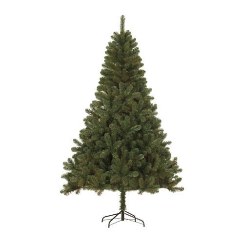 Black Box kerstboom Canmore (h120 x ø76 cm) kopen