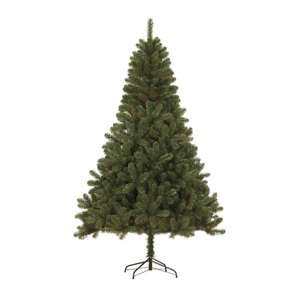Black Box kerstboom Canmore (h120 x ø76 cm), Nee