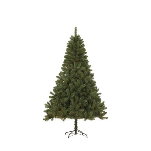 Black Box kerstboom Canmore (h155 x ø89 cm) kopen