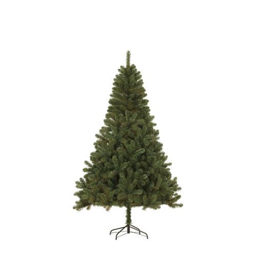 Black Box kerstboom Canmore (h185 x ø115 cm) kopen