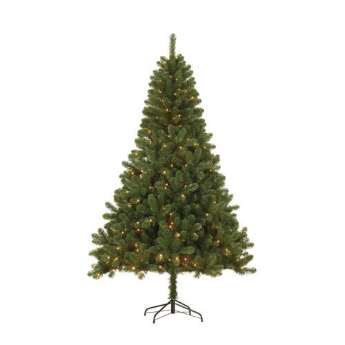 Black Box verlichte kerstboom Canmore (h120 x ø76 cm) kopen