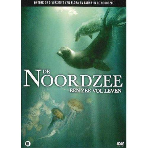Noordzee (DVD) kopen