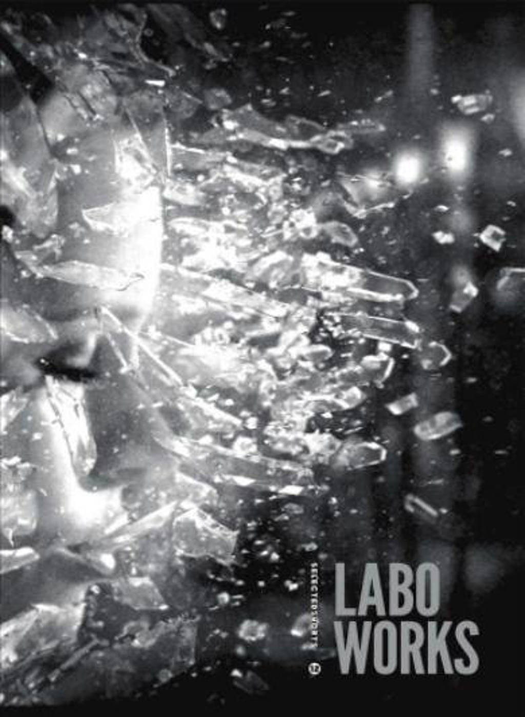 Selected shorts 12 - Labo works (DVD)