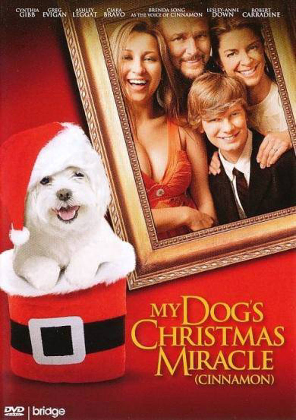 My dog's christmas miracle (DVD)