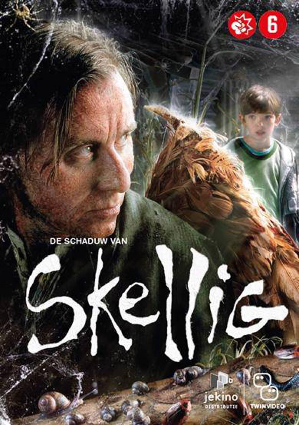 Schaduw van Skellig (DVD)
